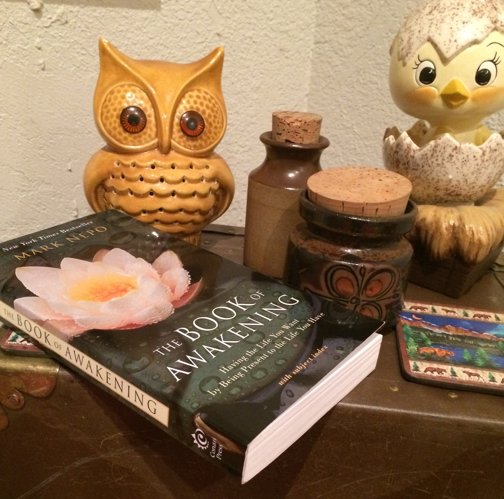 "Still life with ""The Book of Awakening"" & Chicken & Owl & Little Jars."