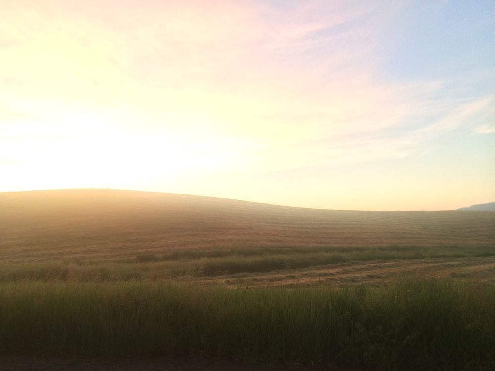Gorgeous sunrise on the Palouse. June 2015.