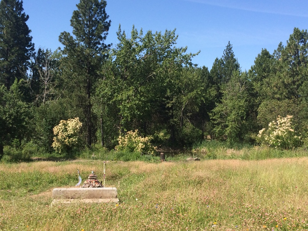 """The """"Apacheta"""" sits amongst a field of wildflowers. The bench is a place to sit and admire the landscape. The pond sits to the right. Photo by Jill, 22 June 2015."""