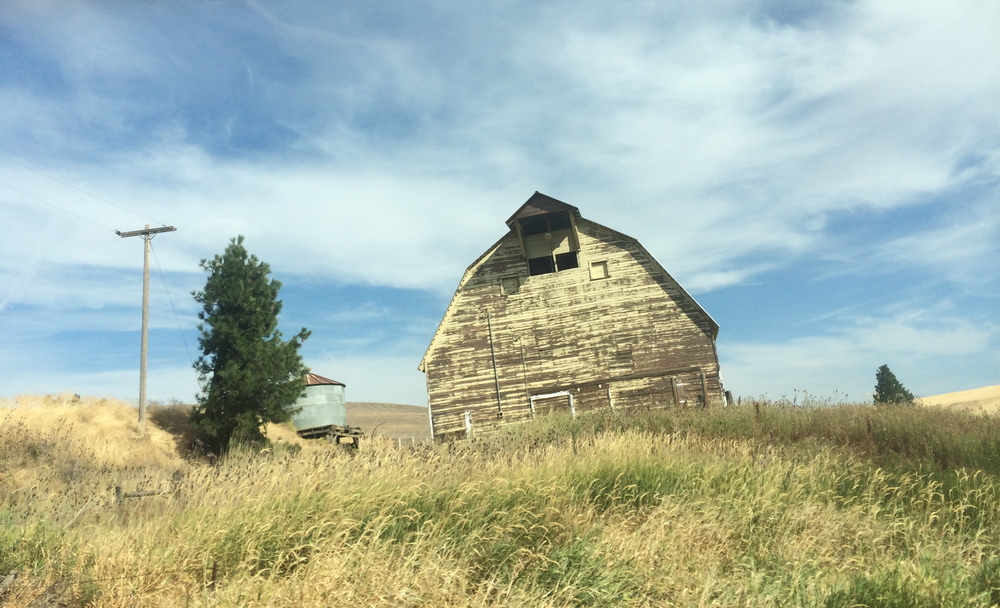 This barn is awesome.  I believe it is on the road between Palouse & Colfax, WA.  But, I know it's definitely somewhere in eastern Washington.  Photo by Jill, August 2014.