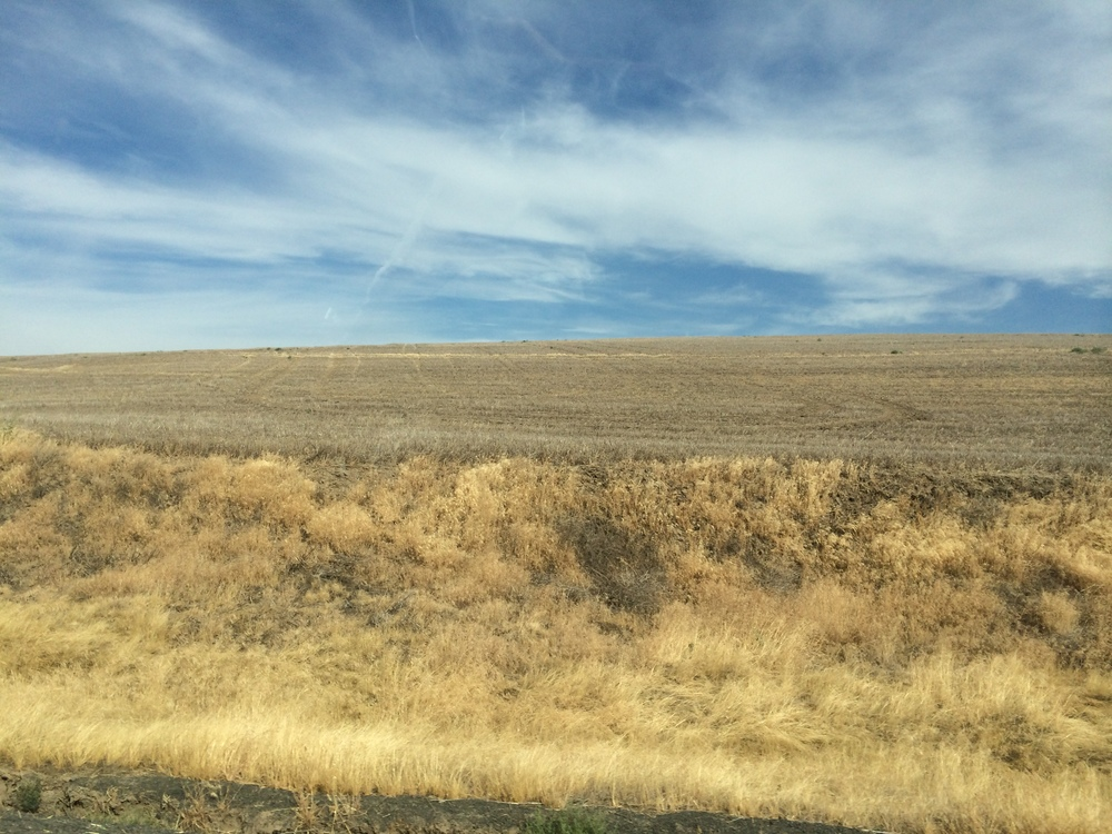 Palouse fields, post harvest.  August 2014.