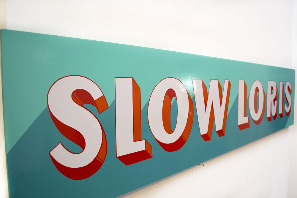 slow_loris2.jpg