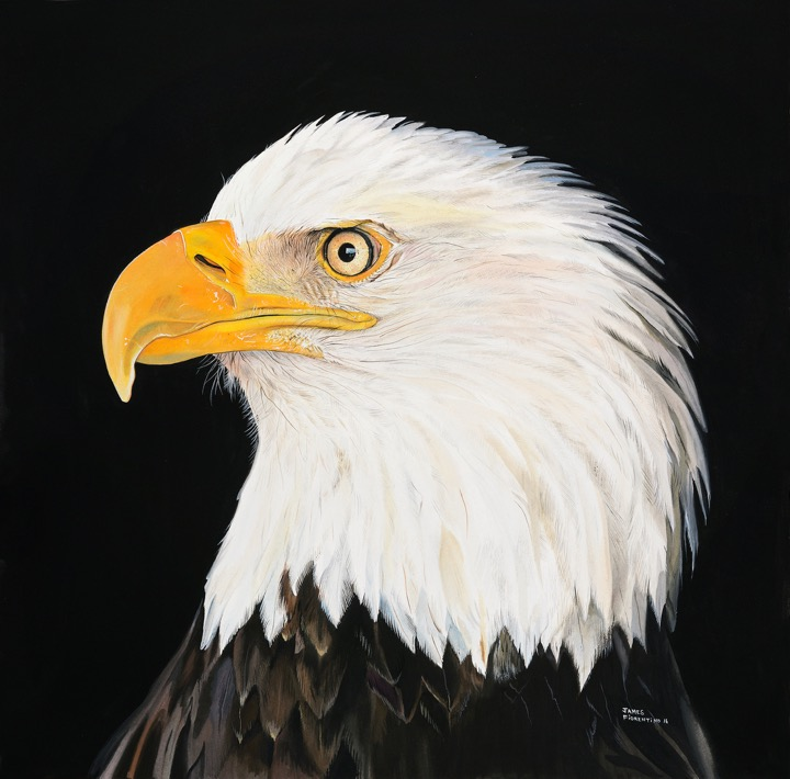 New Jersey Sports Painter's Wildlife Watercolors to Benefit Conservation | 09.30.2016