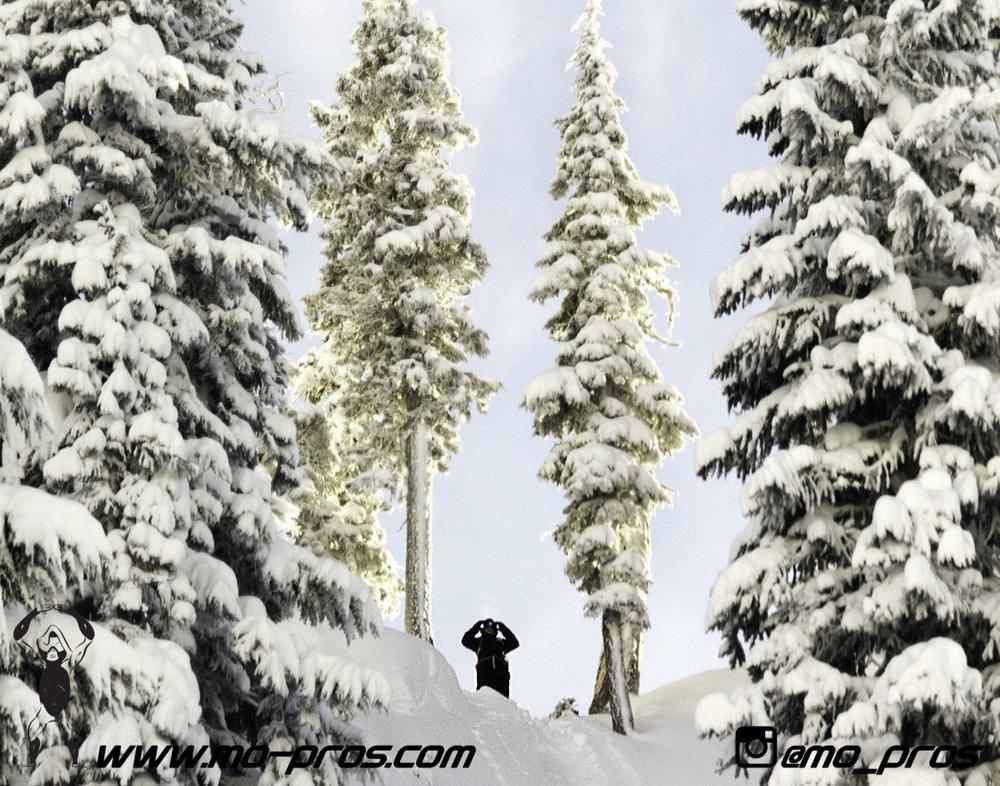 49_Snowbike_Timbersled Rack_Tsaina Rack_CFR rack_Cheetah Factory Racing_Snowboard rack_snowboard_snowmobile bag_Snowmobile_timbersled bag_gas Rack_Gear_Gun Rack_LinQ Snowboard Ski_Ski_Snowboarding_Ti.jpg