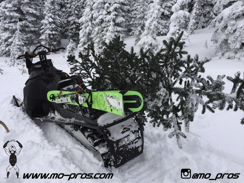 72_Tsaina Rack_Timbersled rack_Timbersled Rack_timbersled bag_snowmobile bag_Snowmobile_Snowboarding_Snowboard rack_snowboard_Snowbike_Ski_Rack_LinQ Snowboard Ski_Gun Rack_Gear_gas Rack_Cheetah Facto.jpg