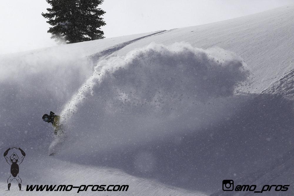 69_Snowbike_Timbersled Rack_Tsaina Rack_CFR rack_Cheetah Factory Racing_Snowboard rack_snowboard_snowmobile bag_Snowmobile_timbersled bag_gas Rack_Gear_Gun Rack_LinQ Snowboard Ski_Ski_Snowboarding_Ti.jpg