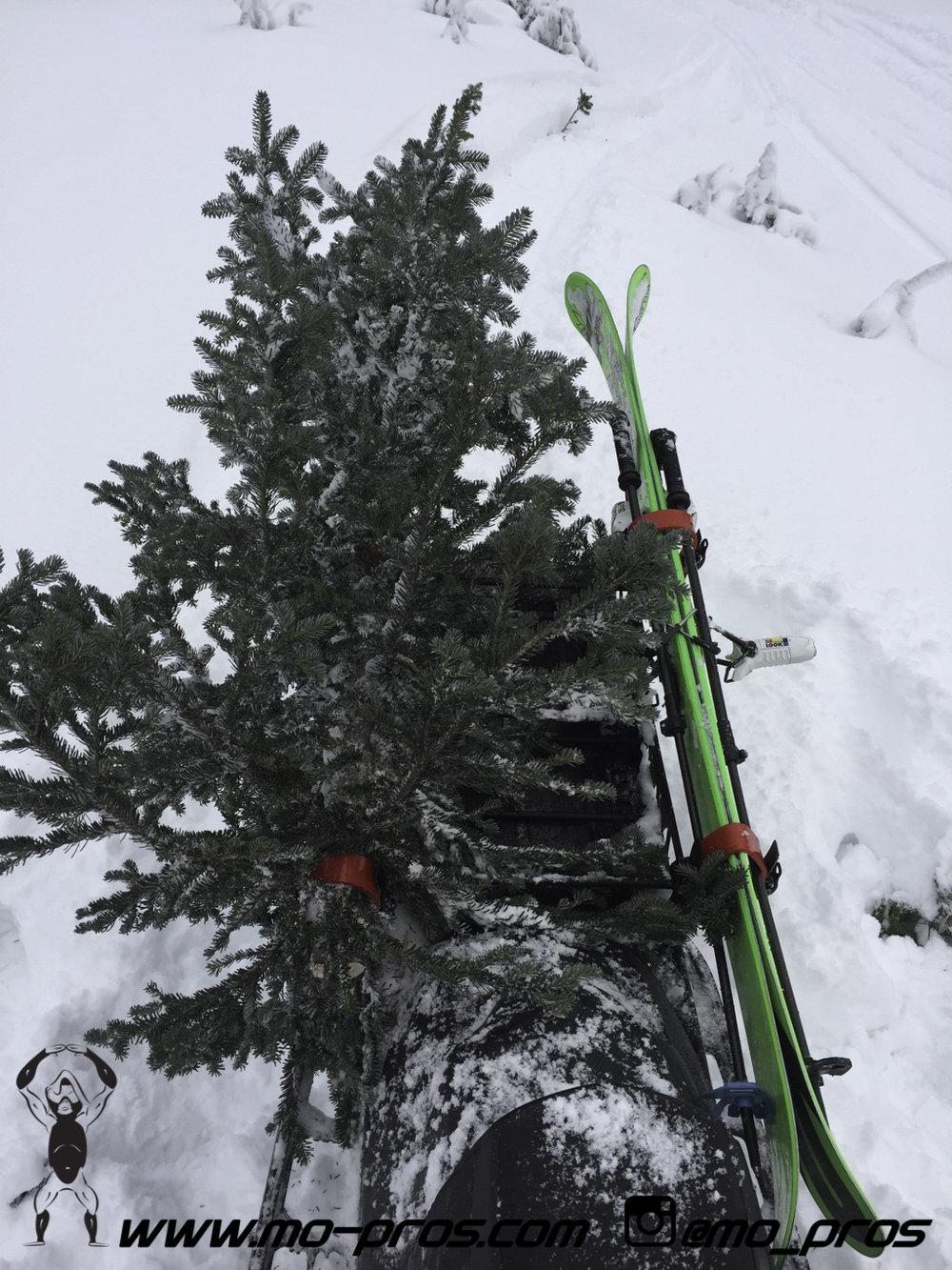 71_Backcountry _Backcountry United_CFR rack_Cheetah Factory Racing_gas Rack_Gear_Gun Rack_LinQ Snowboard Ski_Rack_Ski_Snowbike_snowboard_Snowboard rack_Snowboarding_Snowmobile_snowmobile bag_timbersl.jpg