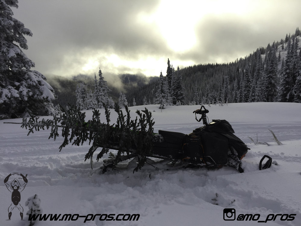 74_Backcountry _Backcountry United_Rack_Ski_Snowbike_Timbersled Rack_Tsaina Rack_CFR rack_Cheetah Factory Racing_gas Rack_Gear_Gun Rack_LinQ Snowboard Ski_Snowboard rack_snowboard_Snowboarding_snowmo.jpg
