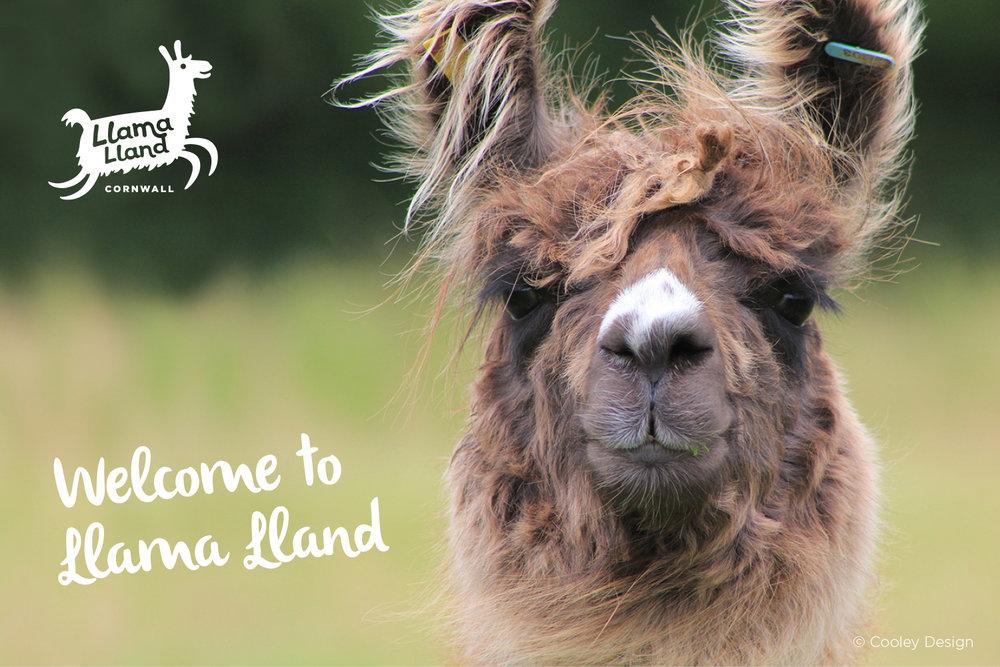 Llama-Lland_Slideshow_1.jpg