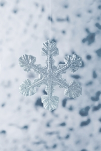 Each snowflake is a individual masterpiece - Just like our customers