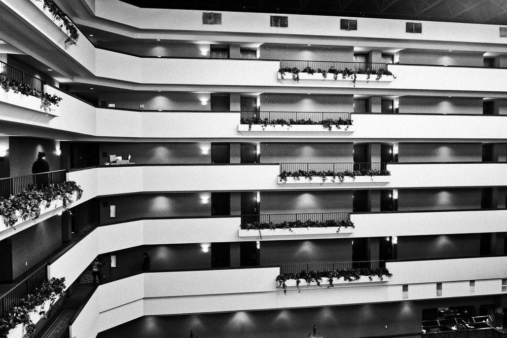 Lines at the Hotel