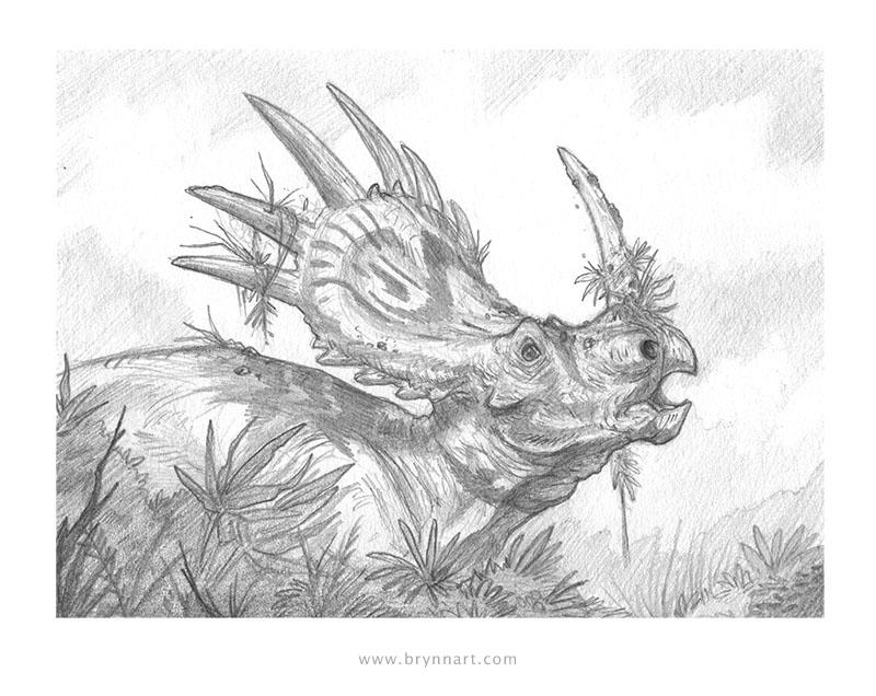 Styracosaurus - SOLD