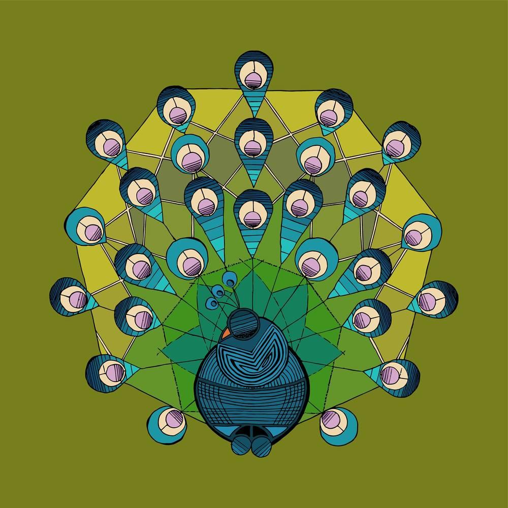 https://society6.com/product/a-heptagonal-peacock_t-shirt#s6-3748464p15a4v75a5v18a11v49