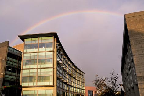 meded_rainbow.jpg
