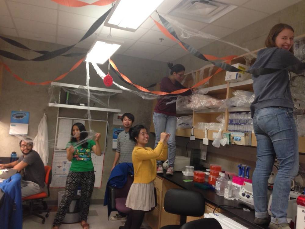 The lab gets into the spirit of Halloween for our upcoming lab tour.