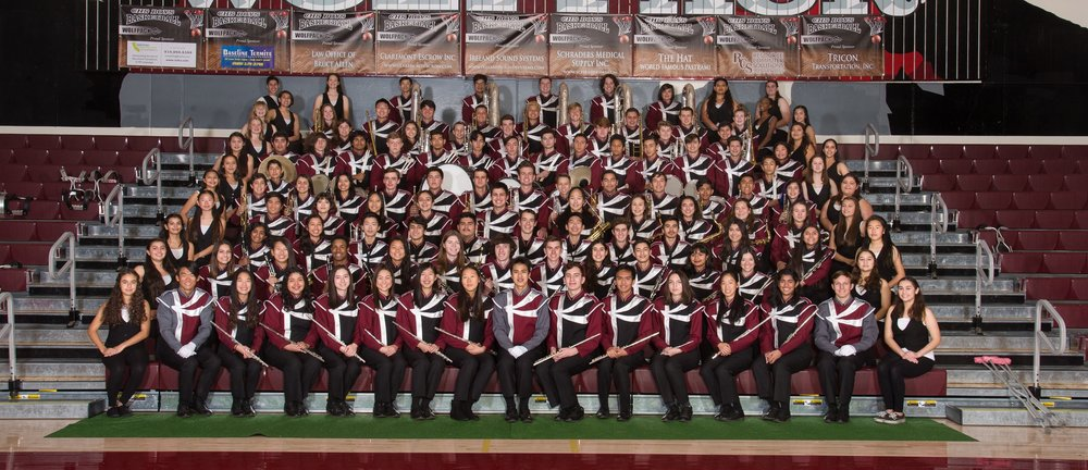Nice group image of the CHS Marching Band on a horrible background.