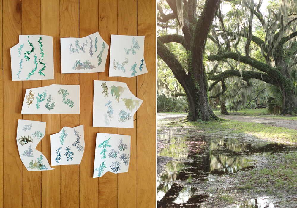 Left: pieces of plant paintings used for layering, right: ancient trees draped in Spanish moss in City Park from my trip to New Orleans last year