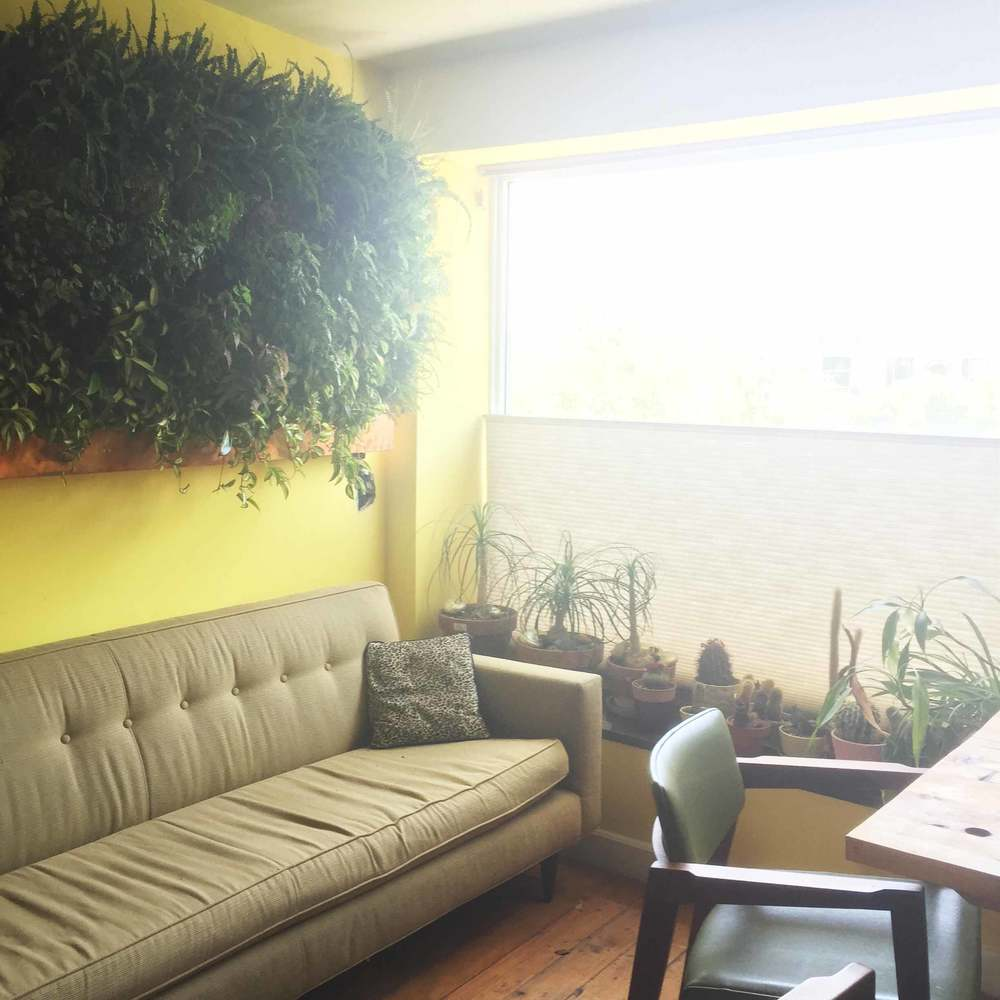 A green wall and cactus collection add life to this cheerful yellow office nook.