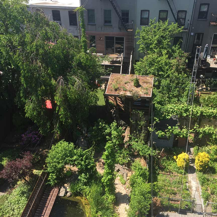 A view of the backyard from above.