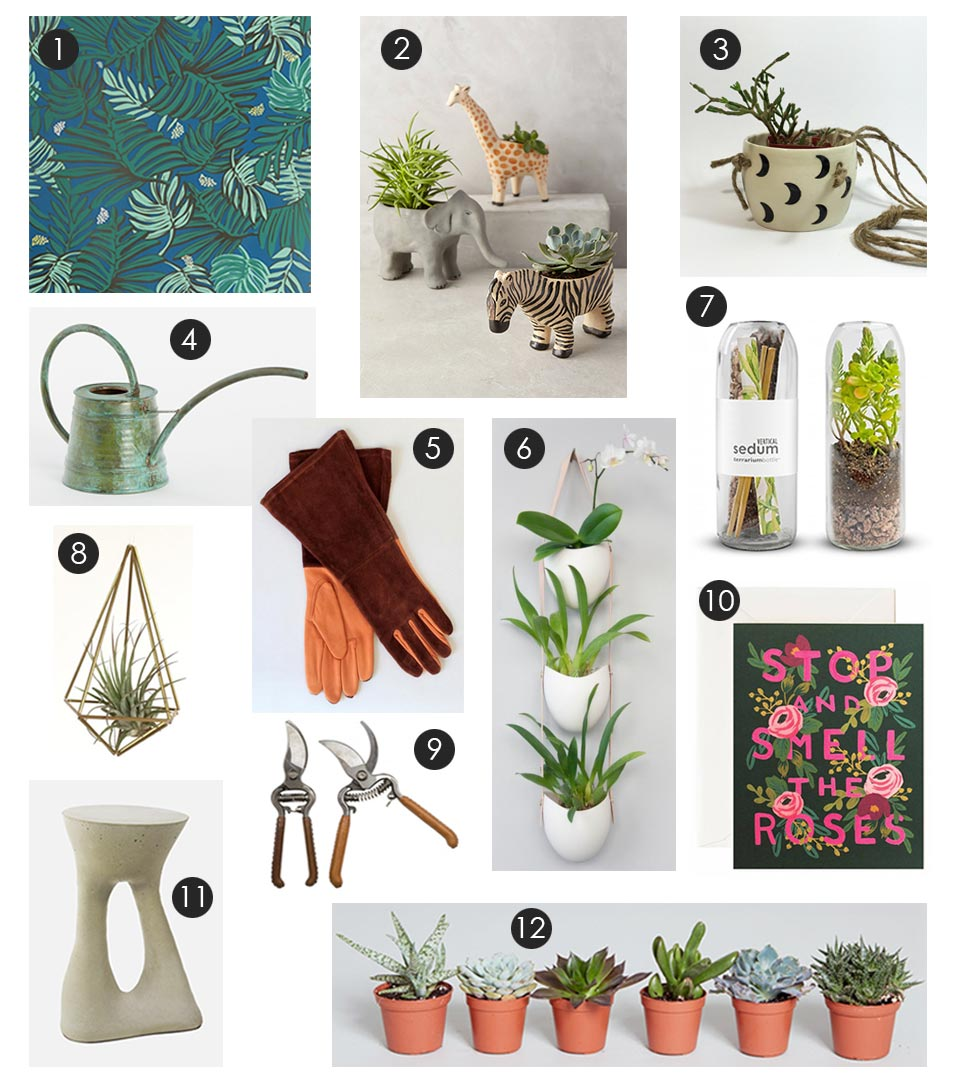 plant-lovers-gift-guide.jpg