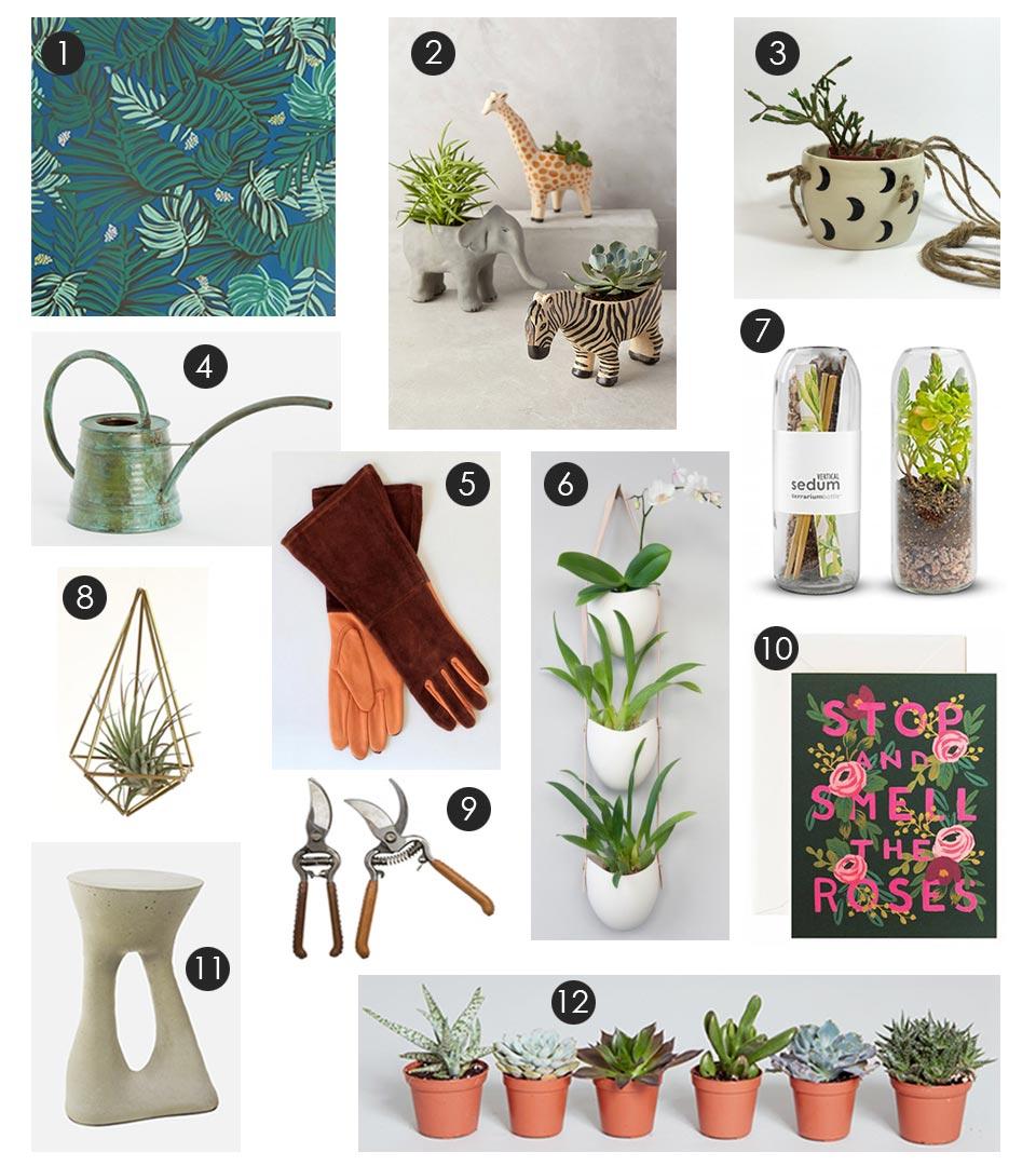 plant-lovers-gift-guide.jpg