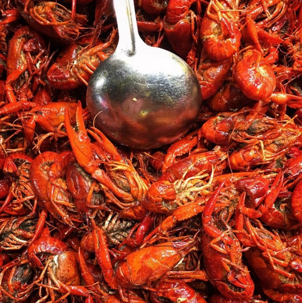 Crawfish galore. Image via  @jungletimer