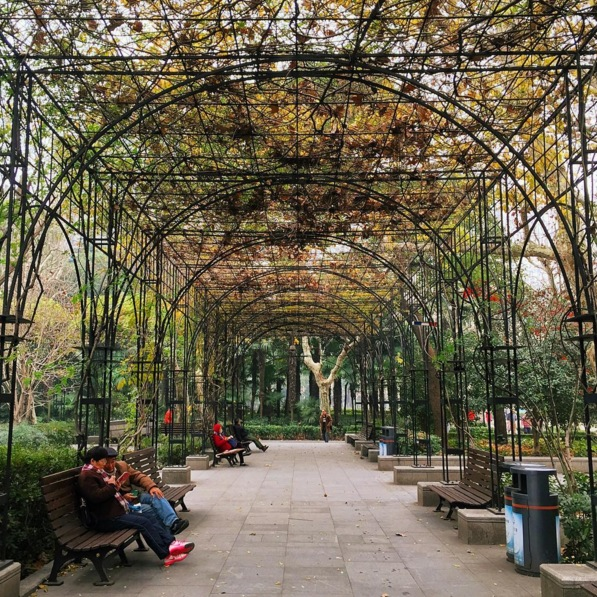 The charming Fuxing park in the French Concession. Image via  @lweatherbee