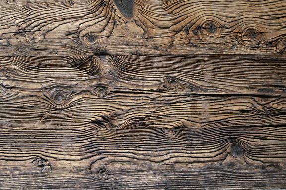 Mushroom Wood.Image via Sawkill Lumber Company.