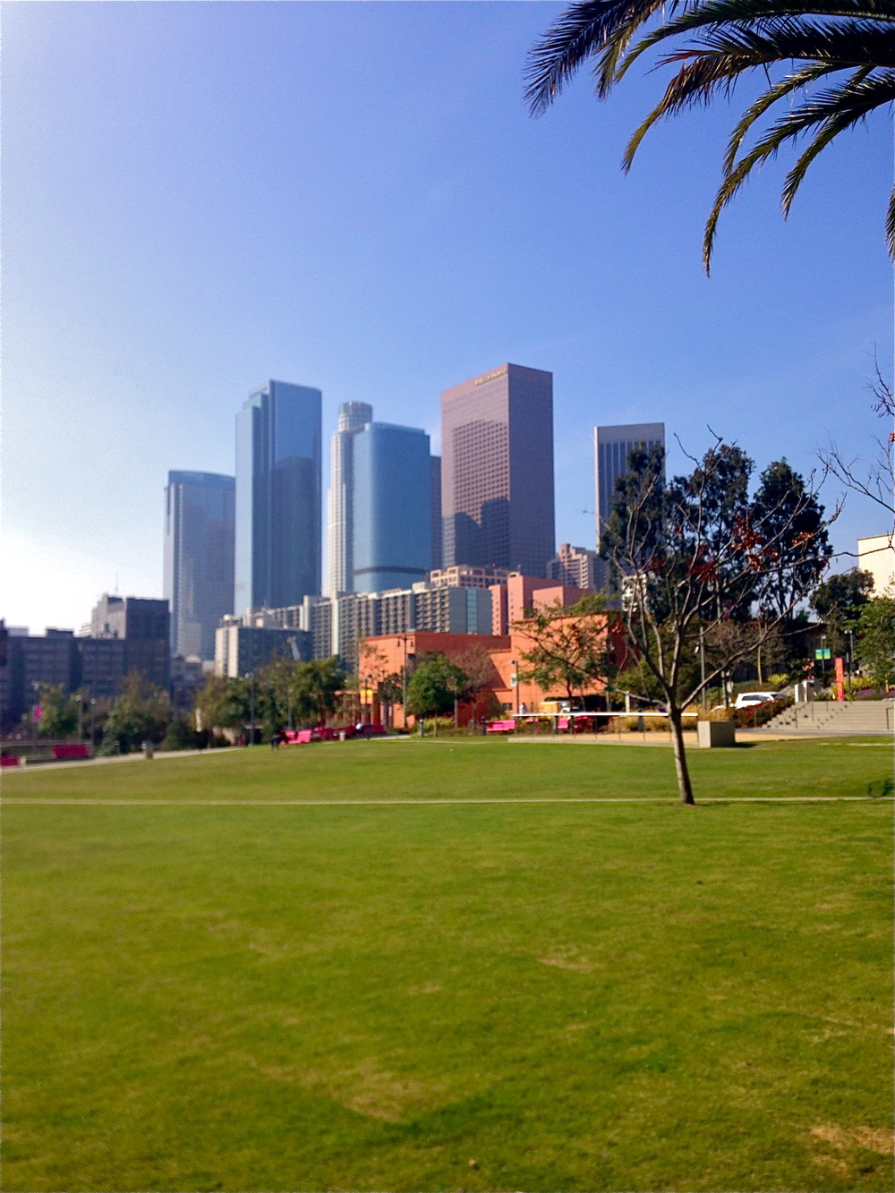 Downtown LA from Grand Park