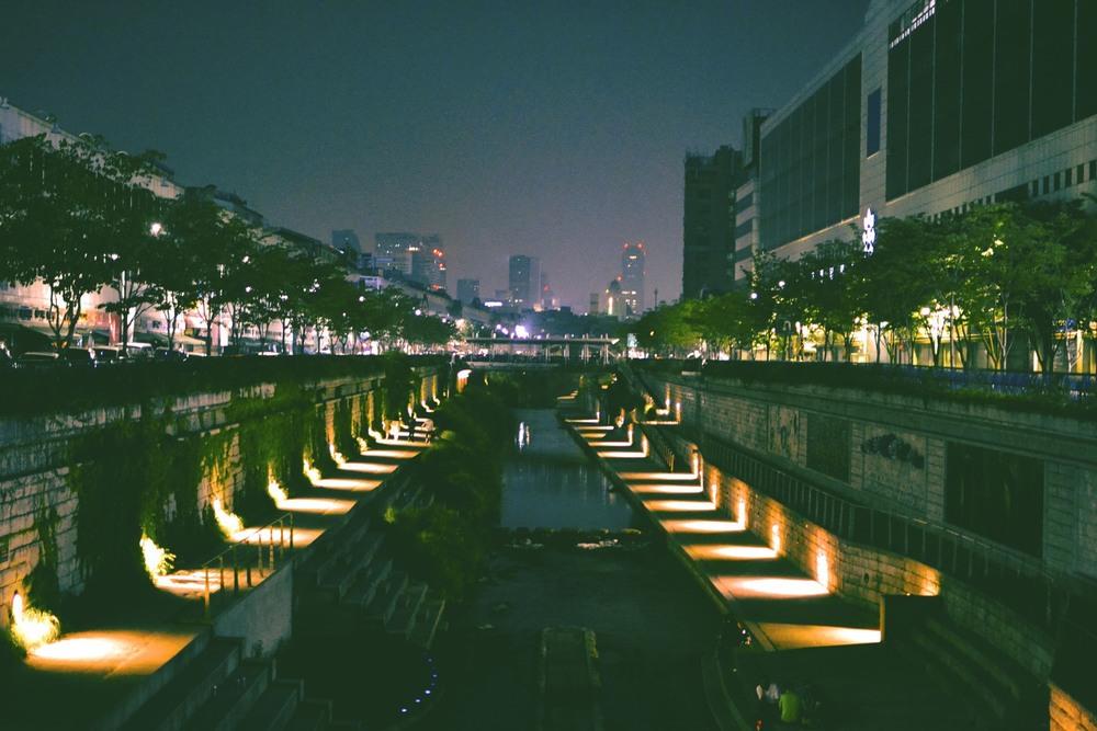 Cheonggyecheon Stream, Dongdaemun Source: alexis-jenkins.squarespace.com