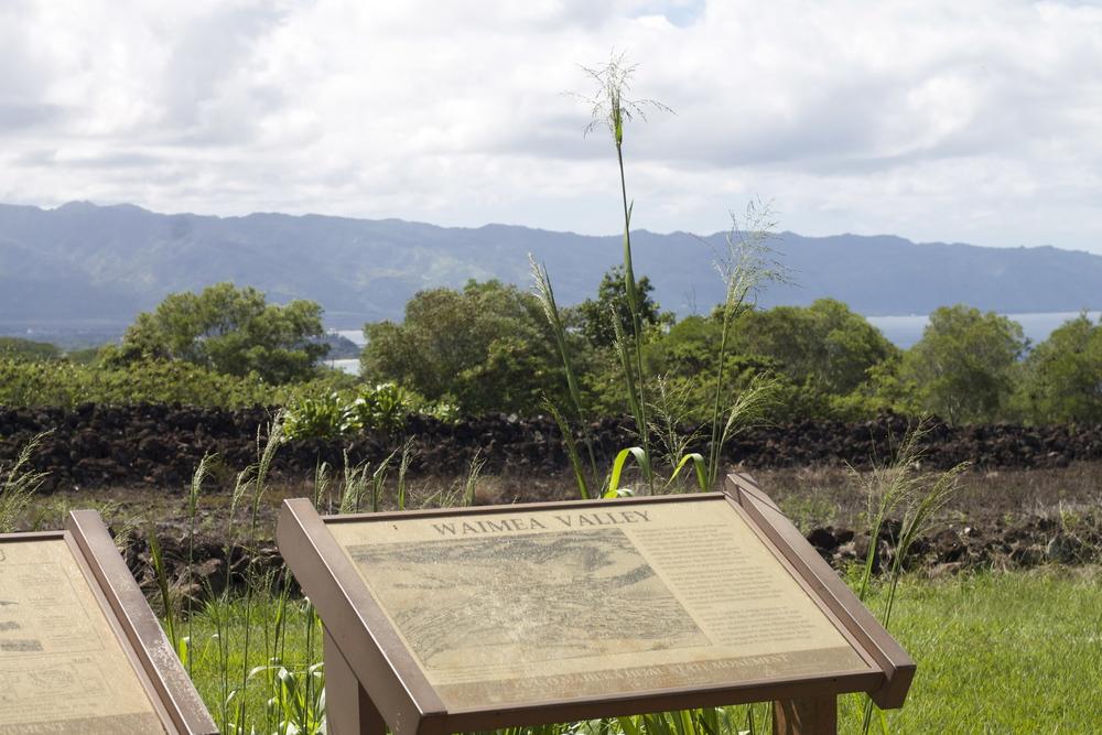 Pu'U O Mahuka Heiau State Monument