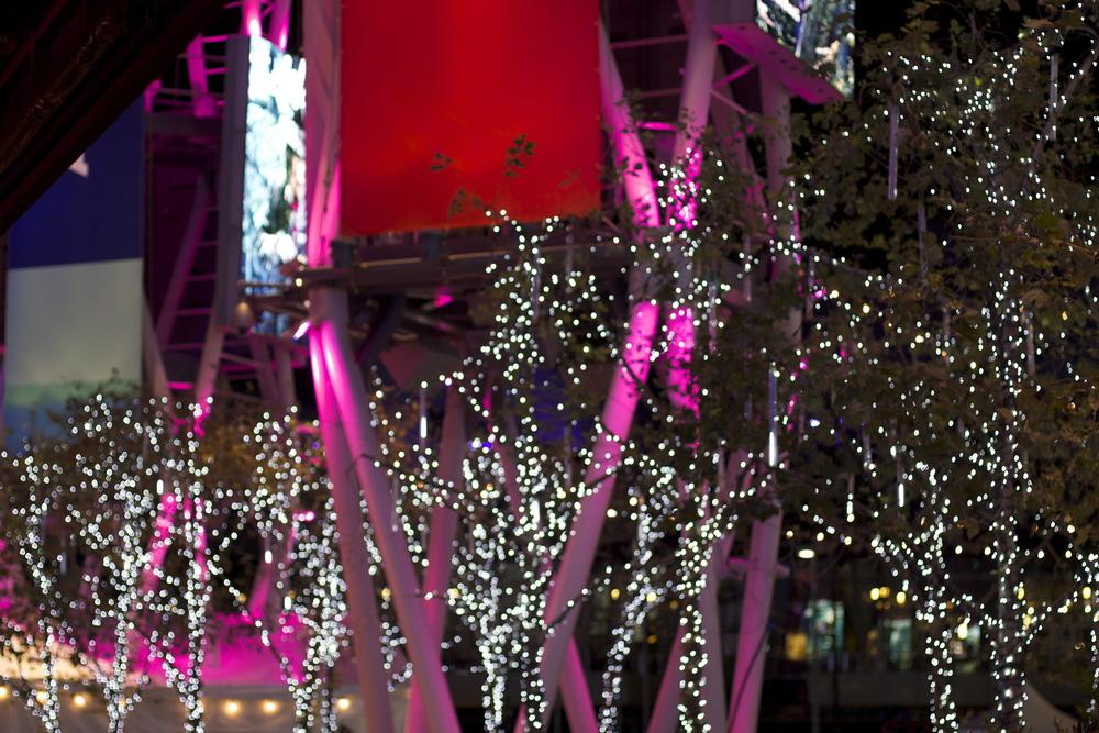 Christmas lights at LA Live
