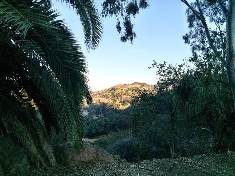 malibu winery scenery