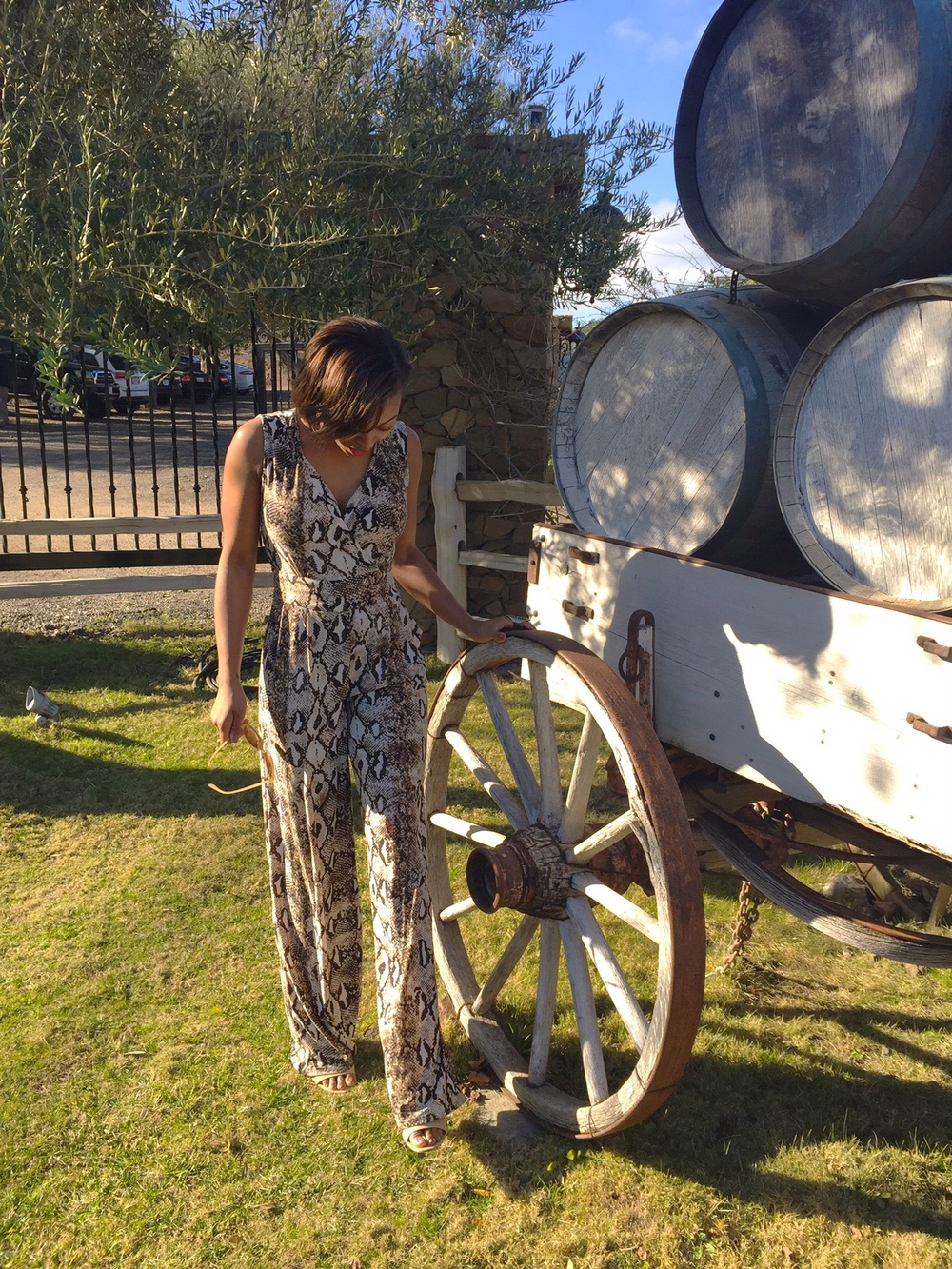 malibu winery birthday
