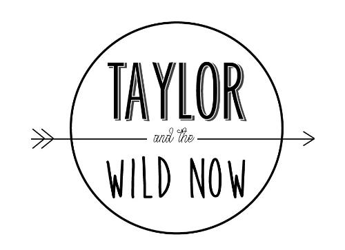 logo wild now.jpg