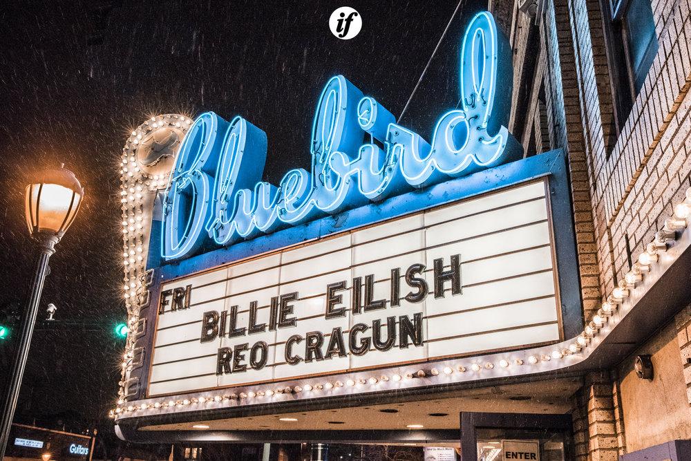Billie Eilish photo by Interracial Friends>Mowgli Miles.JPG