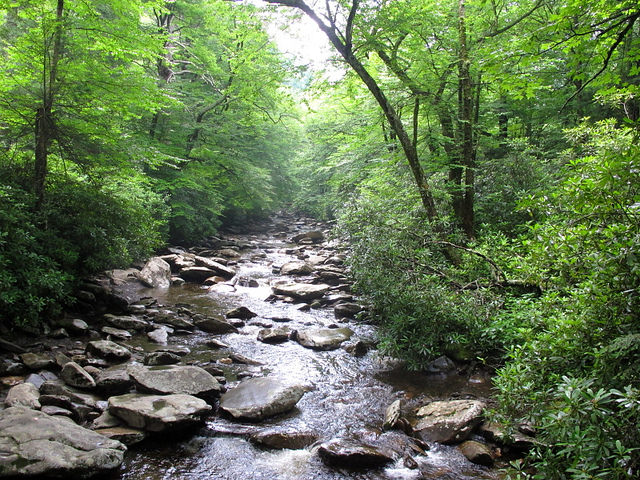 Balsam Creek at Alum Cave Trailhead