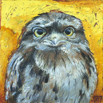 "Tawny Frogmouth, oil on board, 6""x6"" ©GallowayBrown"