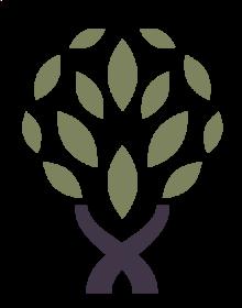 PairOfWoods Logo.png