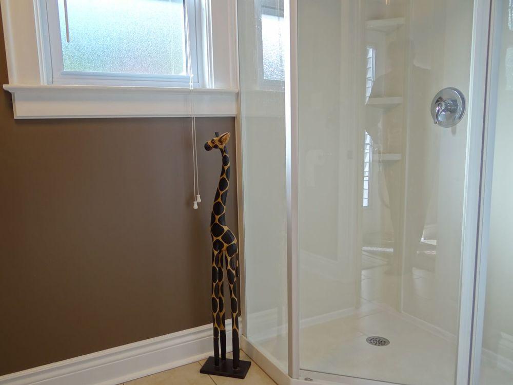 Shower of 3pc. bath.