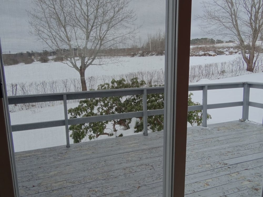 View from Dining Room patio doors
