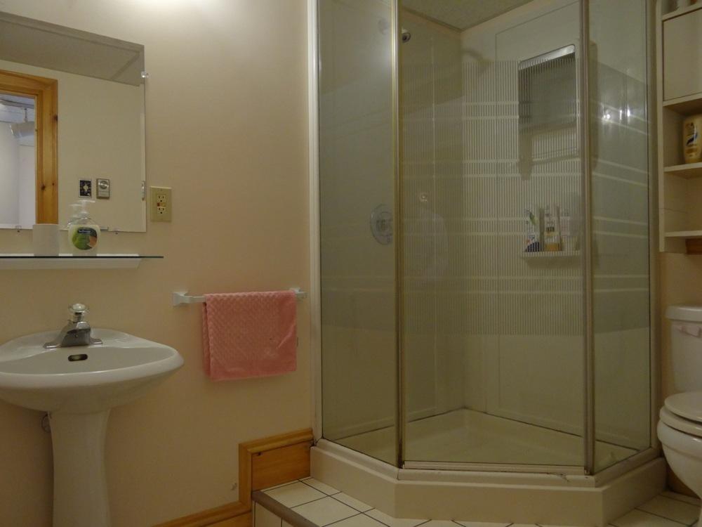 Lower level 3pc. bath
