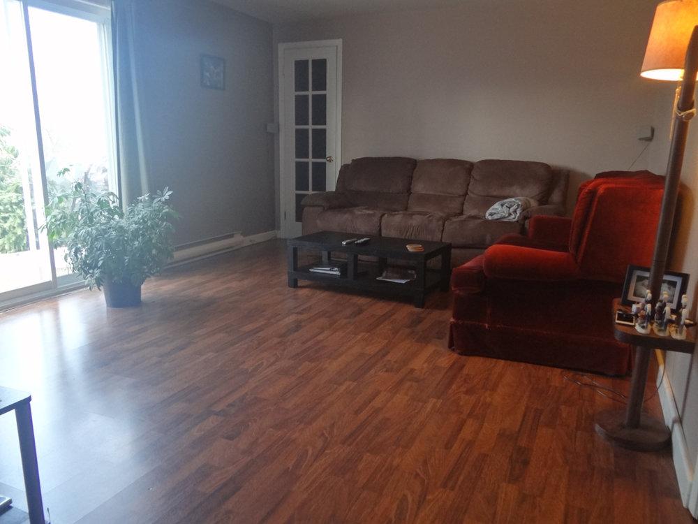 Lower Level - Living Room