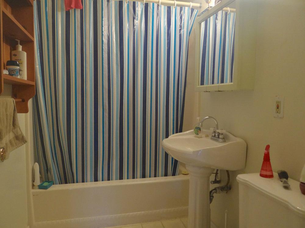 Lower Level 4pc. bath