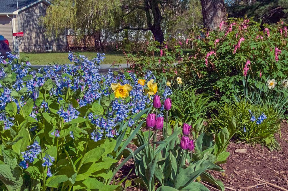 Spring 2018-1022.jpg