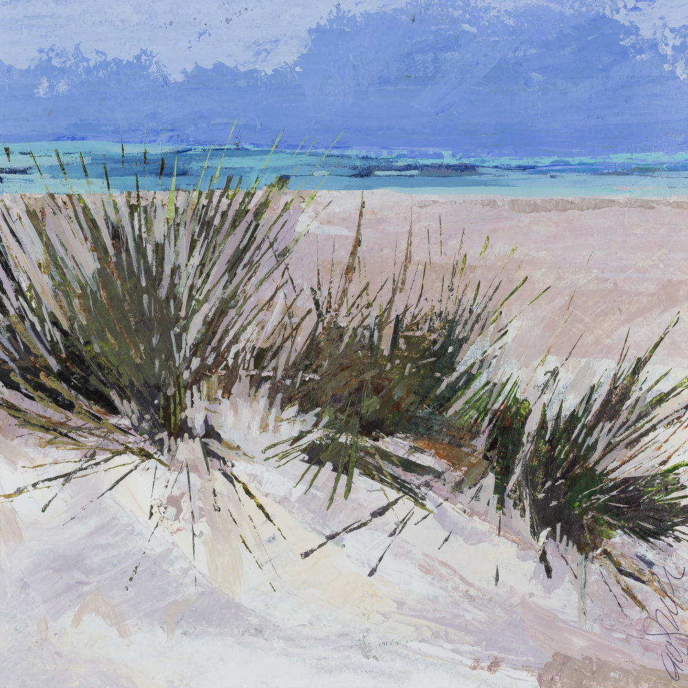 Grass Growing in the Dunes, Inchydoney, 55x54.jpg