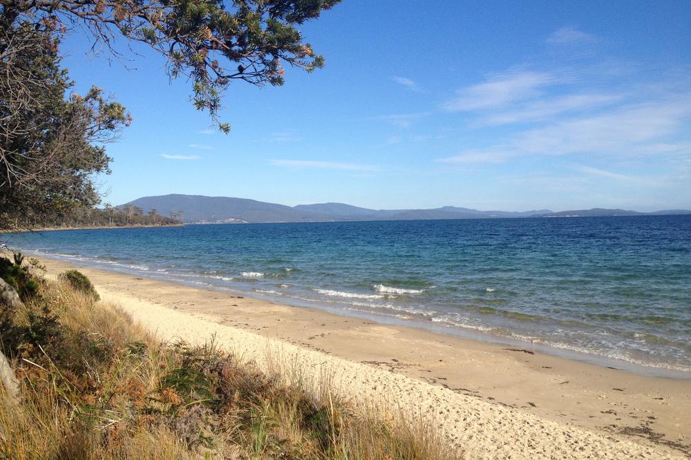 Tasmanian Beach.jpg