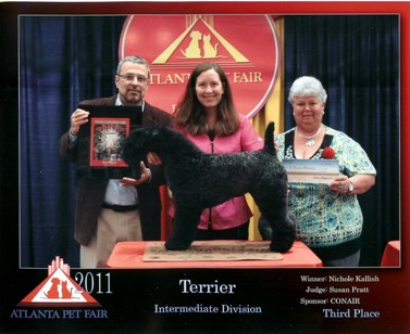 APF%202011%20Terriers%20third%20intermediate%20001%20small.jpg