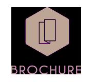 brochure-พิษณุโลก