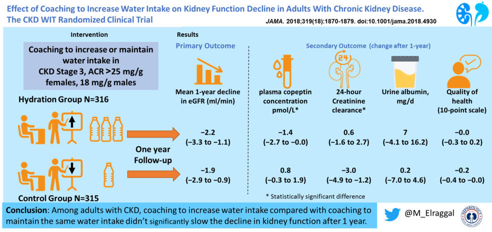 WIT-CKD visual abstract.png